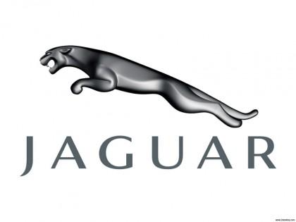Jaguar58