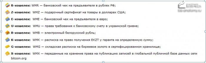 kak-zavesti-vebmani-koshelek-12