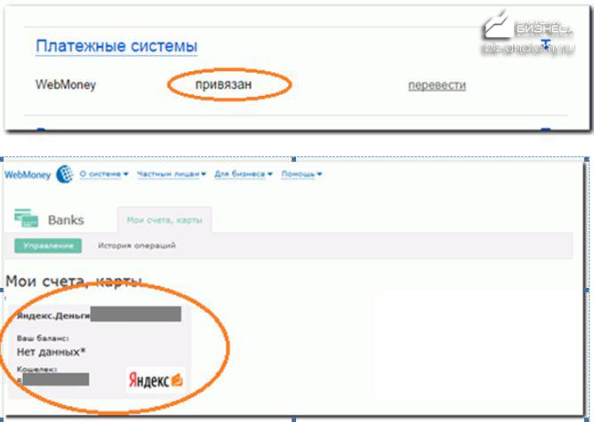 vyvesti-vebmani-18-1
