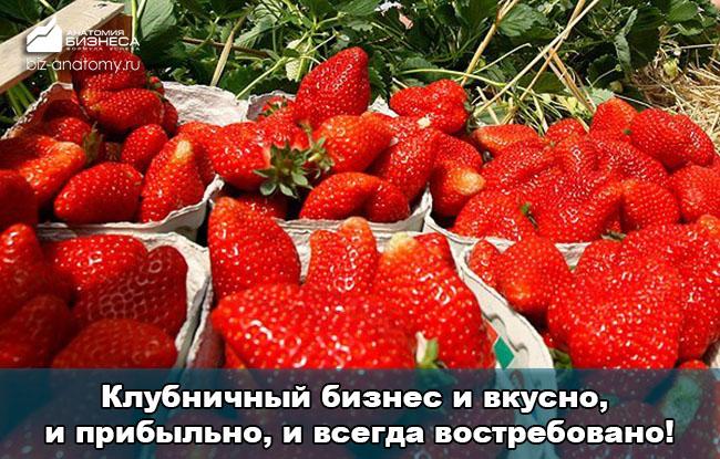 biznes-idei-dlya-selskoj-mestnosti-2