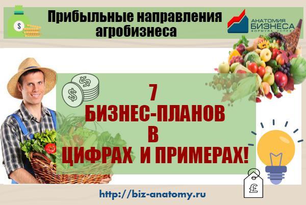 Агробизнес: прибыльные идеи