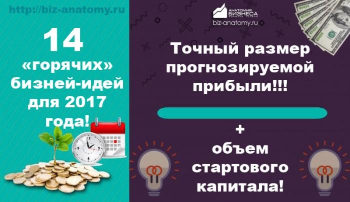 бизнес-идеи-2017-года
