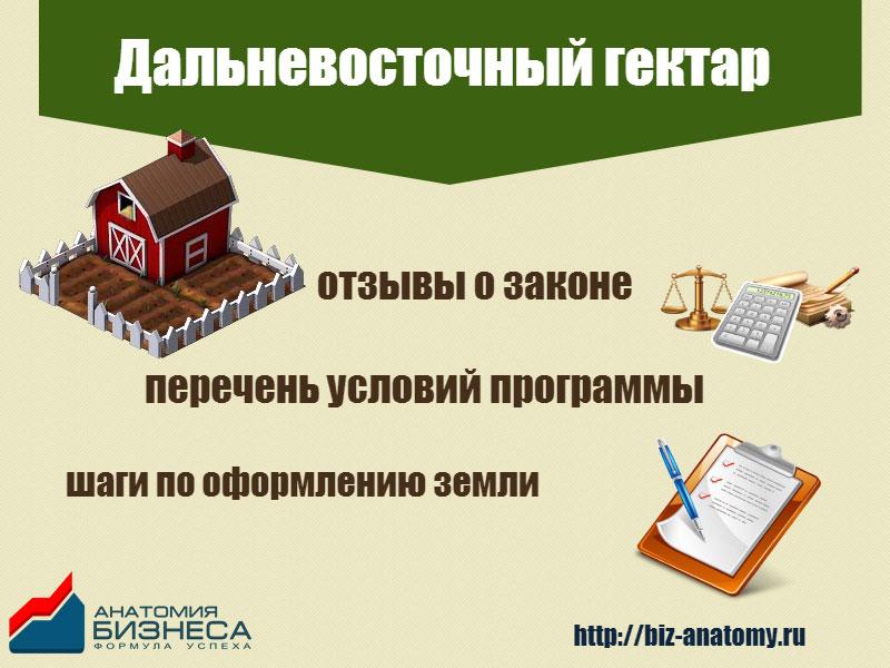 Дальневосточный гектар: отзывы, перечень условий, порядок оформления